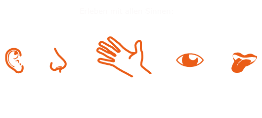 MultiSensorischesDesign